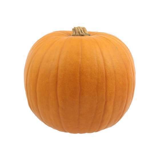 Achat Citrouille Halloween.Citrouille Halloween Jack O Lanterne Truffaut