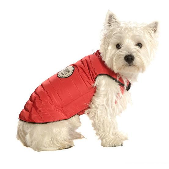 Manteau pour chien Strong S : Rouge, longueur dos 30 cm