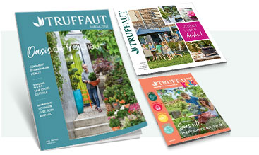 Catalogues & magazines