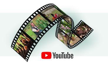 Conseils en vidéos