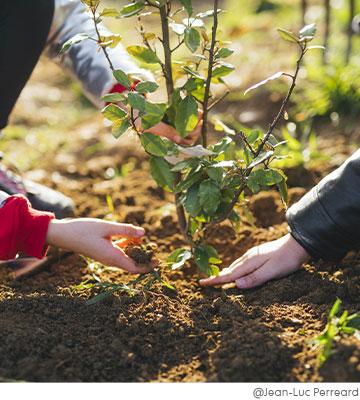 Permettre aux enfants de faire un geste utile pour la Planète