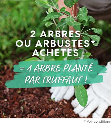 2 arbres achetés = 1 arbre planté