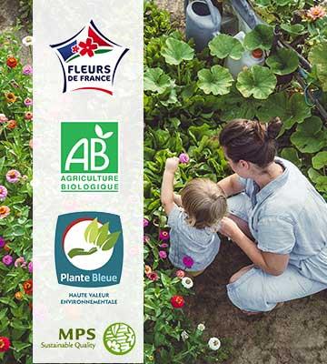 Proposer des plantes durables