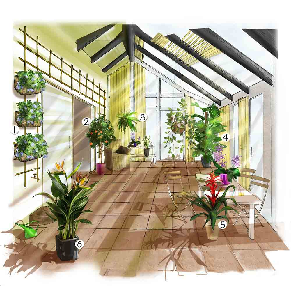 Véranda De Jardin Extérieur un jardin dans la veranda