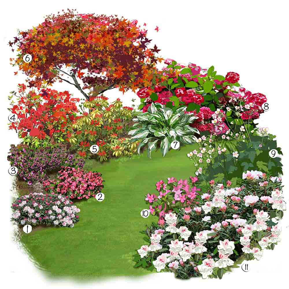 Aménagement D Un Parterre De Fleurs les plantes de terre de bruyère en folie