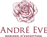andre eve