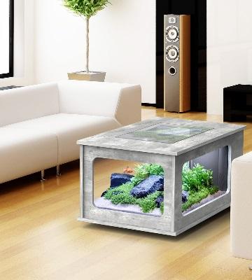 débuter avec aquarium eau douce