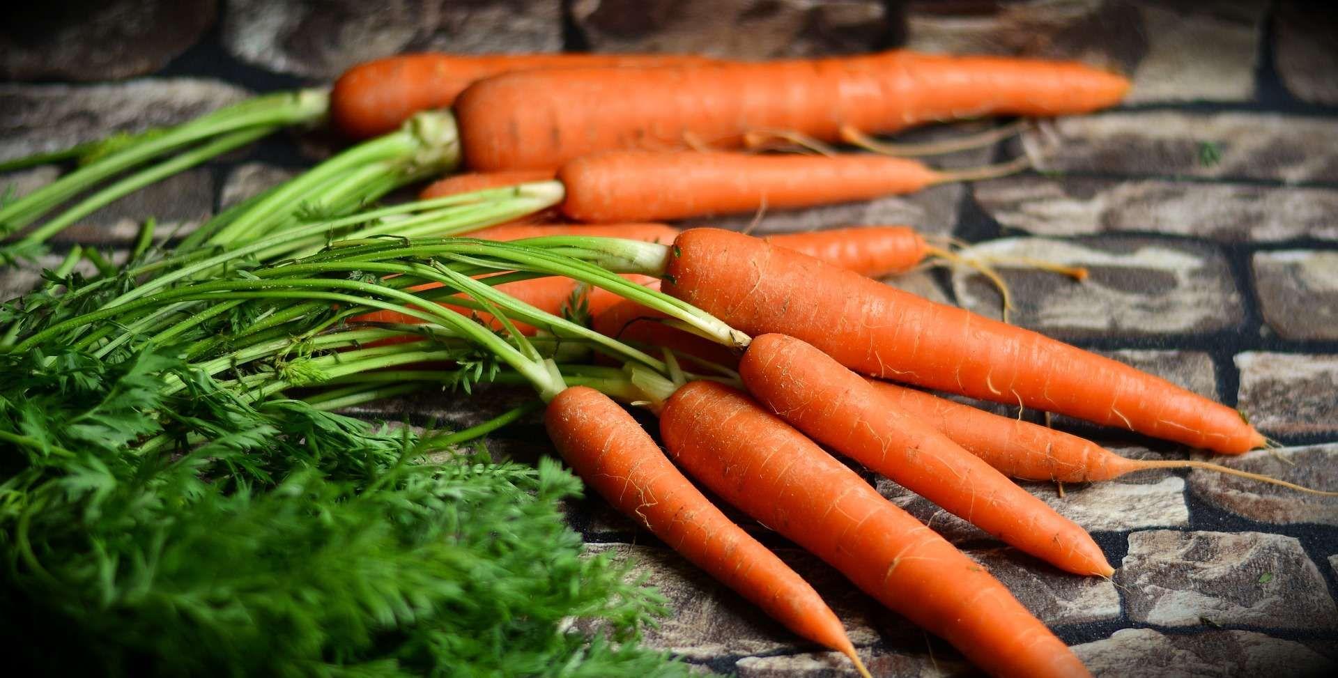 carottes fanes