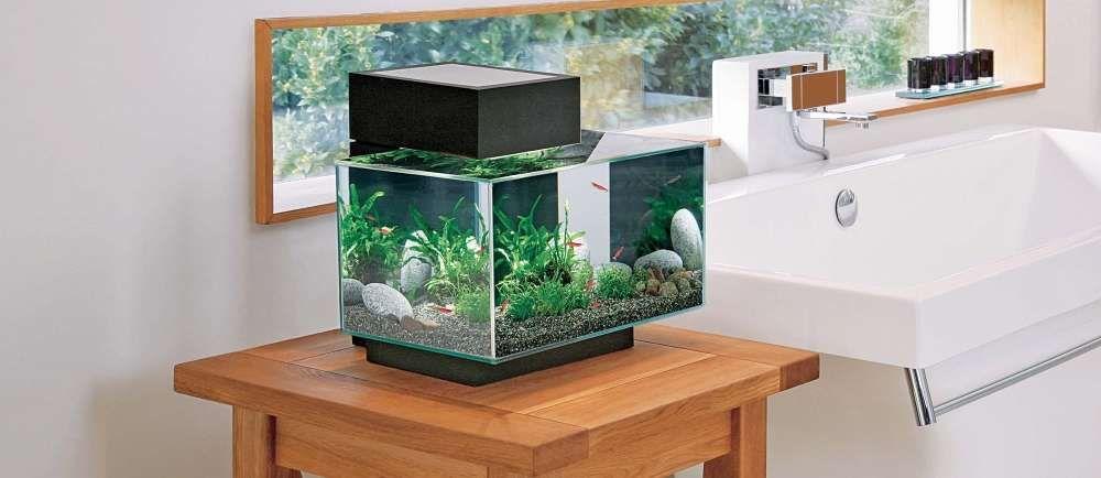choisir chauffage aquarium