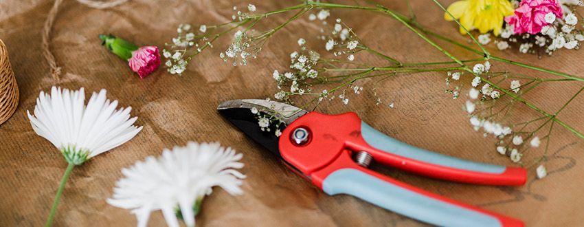 Sécateur pour fleurs