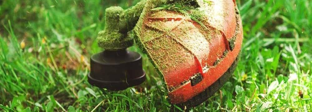choisir débroussailleuse herbe