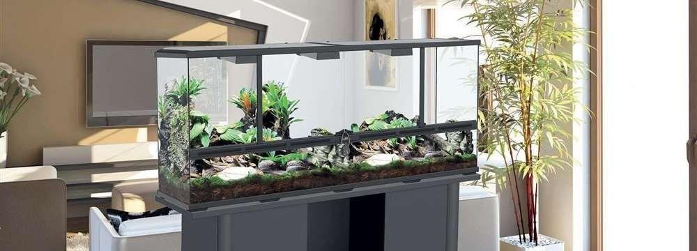 lampe chauffante et UV pour terrarium