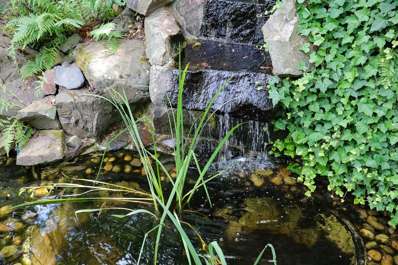 Comment Faire Un Petit Bassin Aquatique comment entretenir un bassin de jardin ?