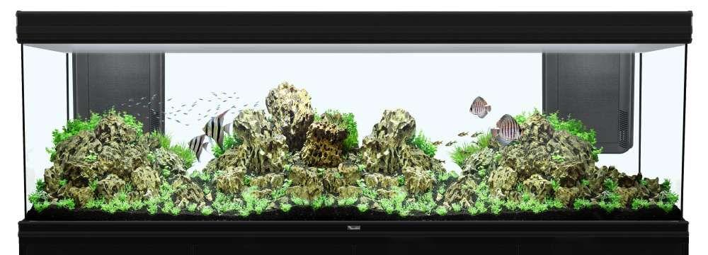 filtre aquarium