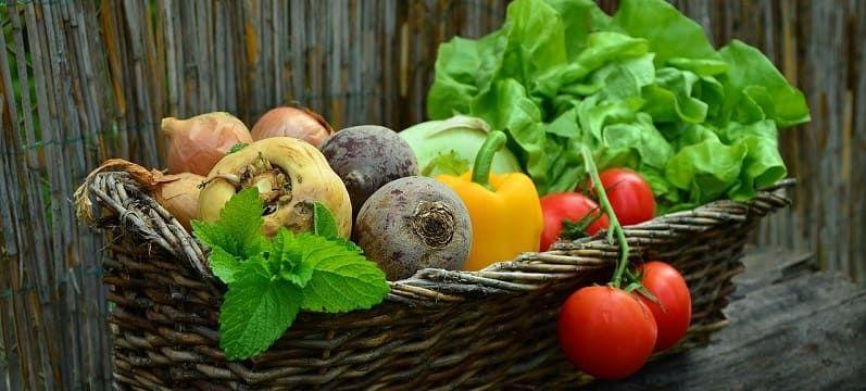 légumes balcon