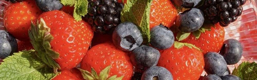 fruits rouges jardin