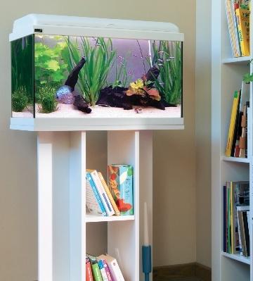 comment entretenir un aquarium
