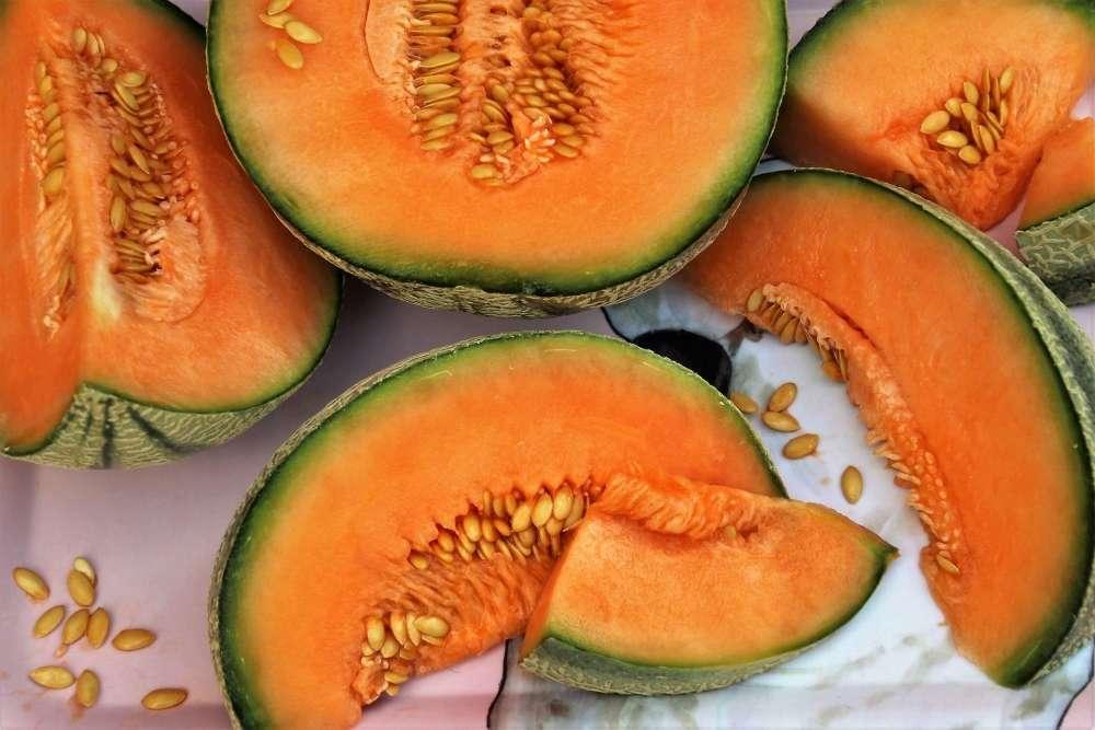 melons avec pépins