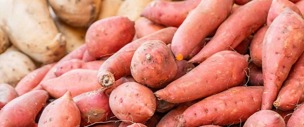 Conseil patate douce