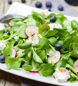 salades gourmandes et légères