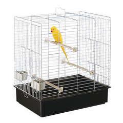 Cage Sonia grandes perruches : bac marron L61,5xl40xh65 cm