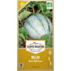 Graines de melon ancien vieille France Bio en sachet
