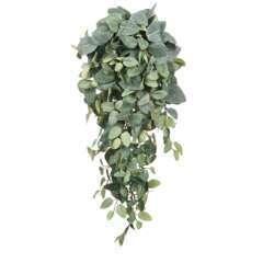 Chute de pilea, vert L. 70 x l. 30 x H. 20 cm
