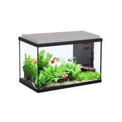 Aquarium Sarawak, noir - 20 litres