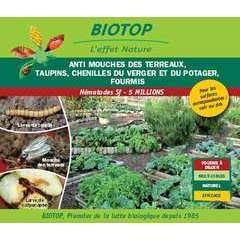 Nematode sf anti mouche terreaux, taupins… - 5m pour 10m2