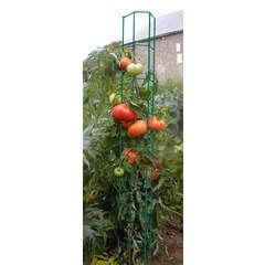 Colonne tomate : 180cm