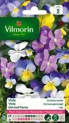 Viola Cornuta variée : en sachet