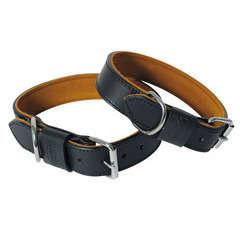 Collier pour chiens Black & Tan : T35/60