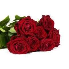 Botte de Roses 'Red Naomi' - 7 tiges : rouge