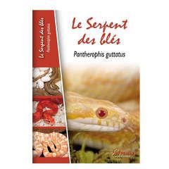 Manuel terrariophilie : Le serpent des blès