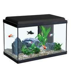 Aquarium Sarawak, noir - 40 litres