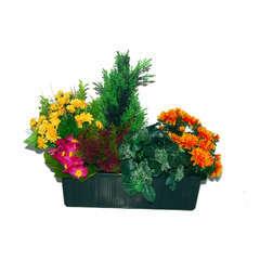 Jardiniere de 40 Cm composition automnale, H44CM - L50Cm, 5Kg