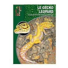 Guide de la terrariophilie : Le Gecko Leopard