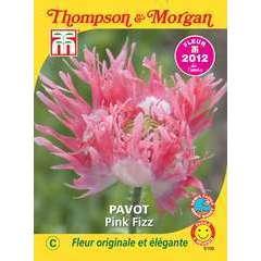 graines de fleur: pavot pink fizz 0.1645 grammes