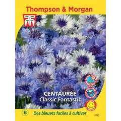 graines de fleur: centauree classic fantastic 0.80 grammes