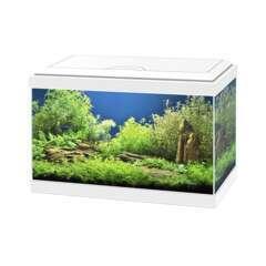 Aquarium Aqua 20 Light Blanc de 17L