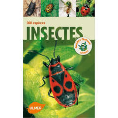 Livre: Insectes