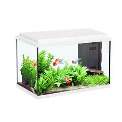 Aquarium Aqua Sarawak, blanc - 20 litres