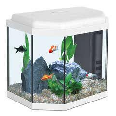 Aquarium Aqua Sarawak, blanc - 27 litres