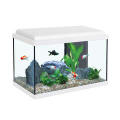 Aquarium Aqua Sarawak, blanc - 40 litres