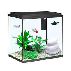 Aquarium Aqua Sarawak, noir - 25 litres
