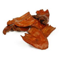 Oreilles de bœuf chien x 50