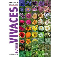 Livre: Plantes vivaces Ulmerium