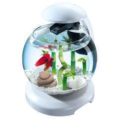 Aquarium Tetra Cascade Globe, blanc - 6,8 litres