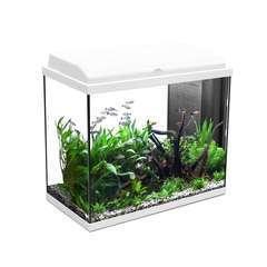 Aquarium Iban, blanc - 93 litres