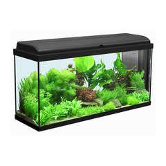 Aquarium Iban, noir - 156 litres